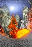 Φωτισμένο χειμερινό δάσος Carpathians στοκ εικόνα με δικαίωμα ελεύθερης χρήσης