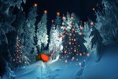 Φωτισμένο χειμερινό δάσος Carpathians στοκ φωτογραφίες με δικαίωμα ελεύθερης χρήσης