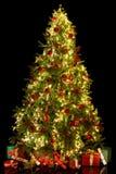 Φωτισμένο χριστουγεννιάτικο δέντρο Στοκ εικόνα με δικαίωμα ελεύθερης χρήσης