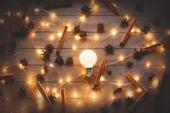 Φωτισμοί και κανέλα διακοπών με το γλυκάνισο αστεριών στοκ εικόνα