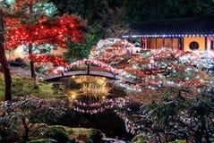 Φωτισμοί Χριστουγέννων στο πάρκο στοκ φωτογραφίες με δικαίωμα ελεύθερης χρήσης
