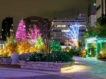 Φωτισμός άποψης νύχτας της Ιαπωνίας στο Τόκιο στοκ εικόνες με δικαίωμα ελεύθερης χρήσης