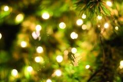 Φωτισμός που θολώνεται bokeh στο υπόβαθρο χριστουγεννιάτικων δέντρων στοκ φωτογραφία
