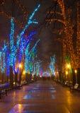 Φωτισμός Χριστουγέννων στη στο κέντρο της πόλης οδό Στοκ εικόνες με δικαίωμα ελεύθερης χρήσης