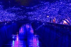 Φωτισμός Χριστουγέννων του Τόκιο στοκ εικόνες