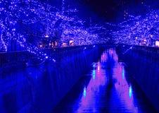 Φωτισμός Χριστουγέννων του Τόκιο στοκ εικόνες με δικαίωμα ελεύθερης χρήσης