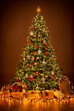Φωτισμός χριστουγεννιάτικων δέντρων στη νύχτα, ένωση διακοσμήσεων Χριστουγέννων στοκ εικόνα με δικαίωμα ελεύθερης χρήσης