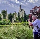 Φωτογράφος με τη κάμερα στο πάρκο Briti - Uckfield, UK στοκ φωτογραφίες
