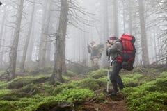 Φωτογράφος με τη κάμερα στο τρίποδο που πυροβολεί ένα τοπίο στο δάσος Στοκ Φωτογραφίες