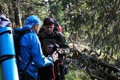Φωτογράφος με τη κάμερα στο τρίποδο που πυροβολεί ένα τοπίο στο δάσος Στοκ Φωτογραφία
