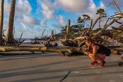 Φωτογράφος στο νησί Jekyll παραλιών Driftwood στοκ φωτογραφίες