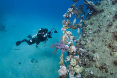 φωτογράφος υποβρύχιος Στοκ Εικόνες