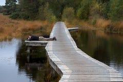 Φωτογράφος φύσης στην εργασία στο Buurserzand Στοκ εικόνες με δικαίωμα ελεύθερης χρήσης
