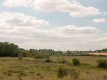 Φωτογραφία αποθεμάτων - αγρόκτημα ζώων τοπίων χωρών στην απόσταση κανένα peop Στοκ εικόνες με δικαίωμα ελεύθερης χρήσης