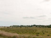 Φωτογραφία αποθεμάτων - αγρόκτημα ζώων τοπίων χωρών στην απόσταση κανένα peop Στοκ Εικόνες