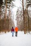 Φωτογραφία από την πλάτη των περπατώντας ανδρών και των γυναικών στο χειμερινό δάσος στοκ εικόνες