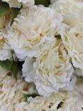 Φωτογραφία εικόνας τεχνητών λουλουδιών στοκ φωτογραφία
