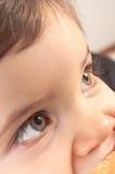 Φωτογραφία ενός νέου μικρού παιδιού στοκ φωτογραφίες