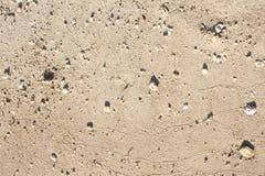 Φωτογραφία κινηματογραφήσεων σε πρώτο πλάνο σύστασης άμμου Ομαλό υπόβαθρο άμμου παραλιών για το πρότυπο εμβλημάτων ταξιδιού Στοκ Φωτογραφία