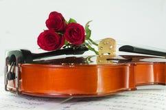 Φωτογραφία κινηματογραφήσεων σε πρώτο πλάνο του βιολιού και των τριαντάφυλλων στοκ φωτογραφία με δικαίωμα ελεύθερης χρήσης