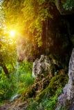 Φωτογραφία λίγου καταρράκτη που ρέει στη σπηλιά Στοκ εικόνες με δικαίωμα ελεύθερης χρήσης