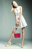 Φωτογραφία μόδας της νέας θαυμάσιας γυναίκας Κορίτσι με την τσάντα στοκ εικόνα