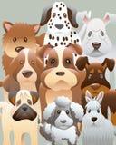 φωτογραφία ομάδας σκυλ&io διανυσματική απεικόνιση