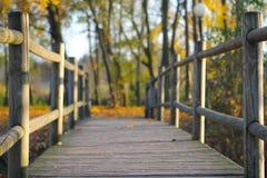 Γέφυρα το φθινόπωρο Στοκ Εικόνες