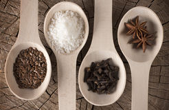 Φωτογραφία που βρίσκεται των κουταλιών κουζινών με τα καρυκεύματα για τα ποτά και το γλυκό: ξυμένη καρύδα, γαρίφαλα, γλυκάνισο ασ Στοκ Φωτογραφία