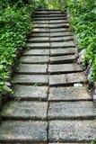 Μετάβαση κήπων Στοκ Εικόνες