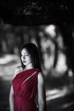 Φωτογραφία της μυστικής προκλητικής γυναίκας στο κόκκινο φόρεμα στη δασική άνοιξη ομορφιάς νεράιδων Στοκ Εικόνες
