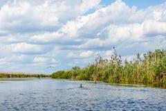 Φωτογραφία τοπίων του δέλτα Δούναβη στοκ φωτογραφίες με δικαίωμα ελεύθερης χρήσης