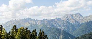 Φωτογραφία του γραφικού ορεινού τοπίου με το δάσος πεύκων Στοκ εικόνες με δικαίωμα ελεύθερης χρήσης