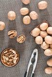 Φωτογραφία του μαλακίου ξύλων καρυδιάς πυρήνων ξύλων καρυδιάς στοκ φωτογραφίες με δικαίωμα ελεύθερης χρήσης
