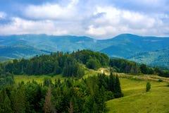 Φωτογραφία του πράσινων δάσους και της κοιλάδας στα Καρπάθια βουνά Στοκ εικόνες με δικαίωμα ελεύθερης χρήσης