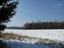 Φωτογραφία του χειμερινού τοπίου το Φεβρουάριο Στοκ Εικόνα