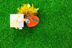 φωτογραφία του όμορφου δώρου και διαμορφωμένου του καρδιά κιβωτίου σε θαυμάσια GR Στοκ εικόνα με δικαίωμα ελεύθερης χρήσης