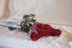 Φωτογραφία των κόκκινων τριαντάφυλλων Στοκ Φωτογραφίες