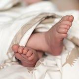 Φωτογραφία των νεογέννητων ποδιών μωρών Στοκ εικόνα με δικαίωμα ελεύθερης χρήσης