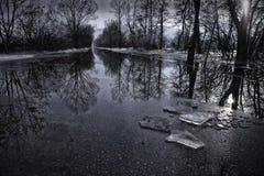 Φωτογραφία χειμερινών τοπίων μετά από τη βροχή Στοκ Φωτογραφία