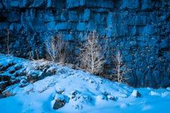 Φωτογραφία Infared στο εθνικό πάρκο Ισλανδία Thingvellir Στοκ φωτογραφία με δικαίωμα ελεύθερης χρήσης