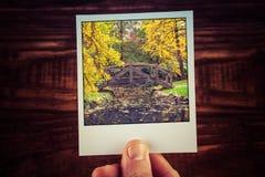 Φωτογραφία polaroid εκμετάλλευσης χεριών της σκηνής φθινοπώρου στο αυστραλιανό γ Στοκ εικόνες με δικαίωμα ελεύθερης χρήσης