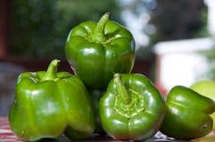 φωτογραφίες πιπεριών μονοπατιών επίσης ψαλιδίσματος οι πράσινες απομονωμένες βλέπουν το παρόμοιο λευκό στοκ φωτογραφίες με δικαίωμα ελεύθερης χρήσης