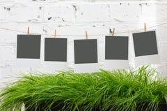 Φωτογραφίες σε ένα clothespin Στοκ εικόνα με δικαίωμα ελεύθερης χρήσης