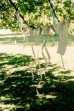Φωτογραφίες του ζεύγους και των κορδελλών που κρεμούν στη θέση εορτασμού, handm Στοκ εικόνες με δικαίωμα ελεύθερης χρήσης