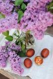Φωτογραφίες των αυγών Πάσχας στο υπόβαθρο των κλάδων της πασχαλιάς στοκ εικόνες