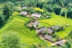φωτογραφισμένο πεζούλι ρυζιού του Μπαλί η Ινδονησία Στοκ Εικόνα