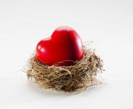 Φωλιά αγάπης με το υγιές σύμβολο καρδιών στοκ φωτογραφία