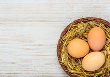 Φωλιά αχύρου με τα αυγά και το διάστημα αντιγράφων Στοκ φωτογραφία με δικαίωμα ελεύθερης χρήσης