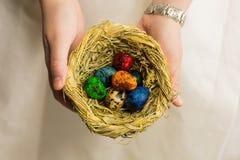 Φωλιά με τα ζωηρόχρωμα αυγά που χρωματίζονται για την προσφορά διακοπών Πάσχας να πάρει ως δώρο Στοκ φωτογραφία με δικαίωμα ελεύθερης χρήσης